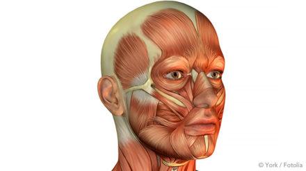Übungen gegen Schnarchen – Gaumensegel und Rachen trainieren